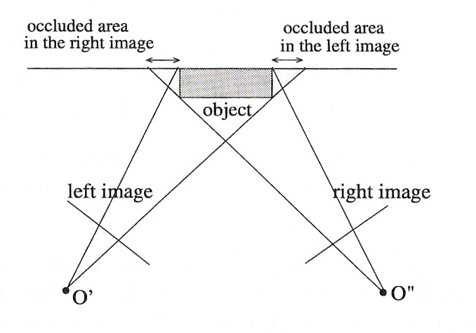 Image occlusion